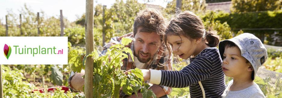 Tuinplant kortingscode