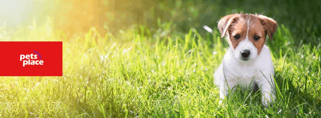pets place kortingscode